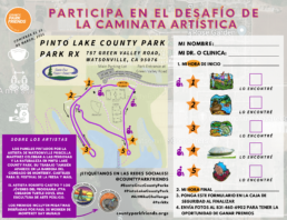 Art Hike Challenge Pinto Lake Park